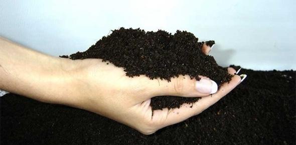 Идея бизнеса – производство биогумуса