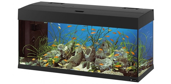 Идея бизнеса – изготовление аквариумов
