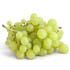 Бизнес на винограде – перспективная идея