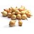 Выращивание лука севка как идея для построения прибыльного бизнеса