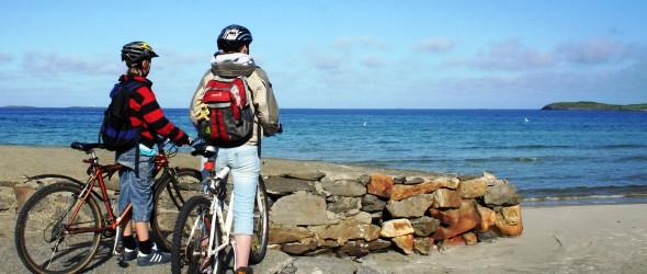 Идея бизнеса — прокат велосипедов